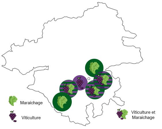bassin-agricole-nantes-maraîchage-viticulture
