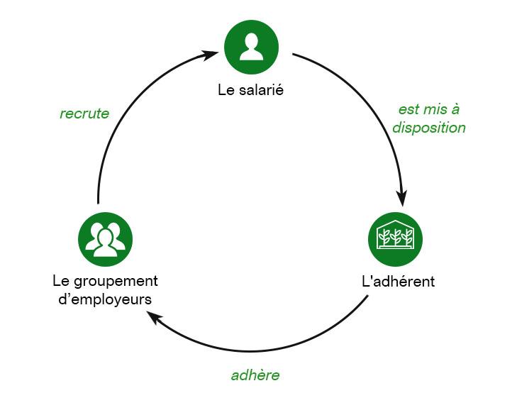 schema-relation-tripartie-ge-loire-et-sevre
